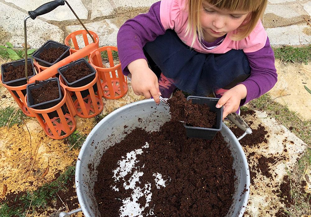 Urtehagen 2018. Hvordan så krydderurter i hagen