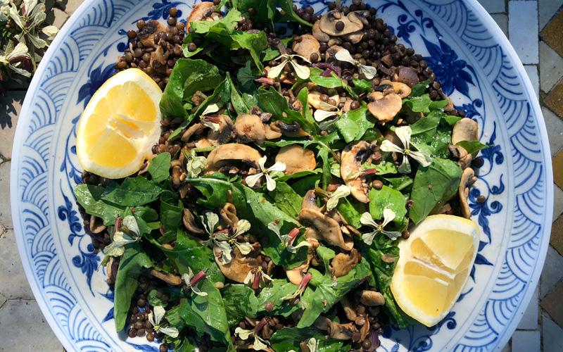 Frisk og sommerlig linsesalat med sopp