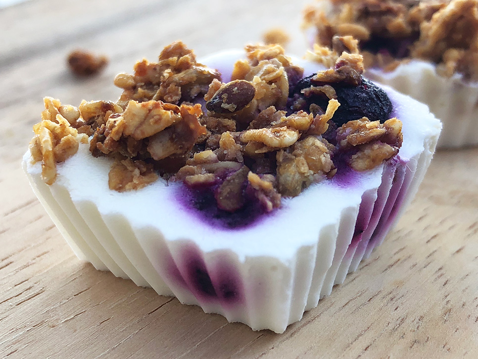 Fryste yoghurtbiter med blåbær og granola