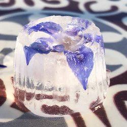 Søte isbiter som smelter ethvert hjerte!