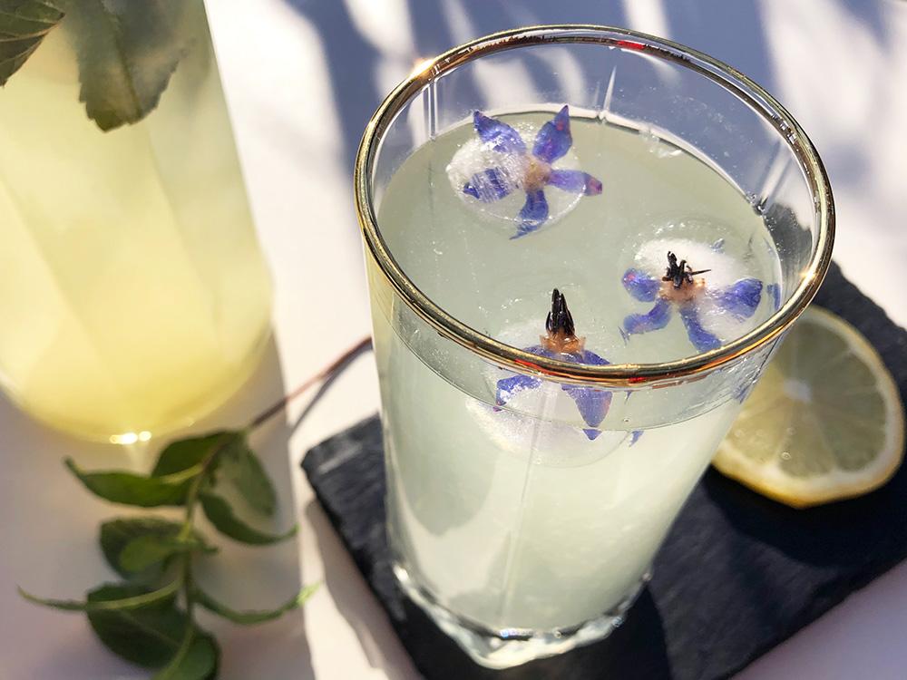 Hjemmelaget limonade med mynte