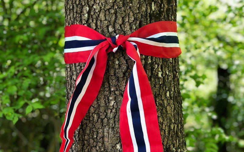 17 mai Norges nasjonaldag 2019